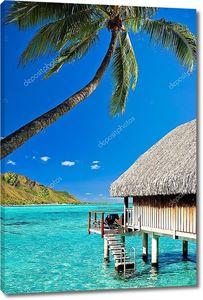 Домика в сутки и palm с шагами по удивительным лагуну