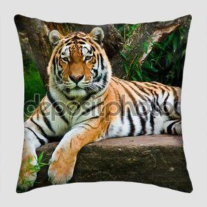 сибирский тигр (Panthera Tigris Altaica)
