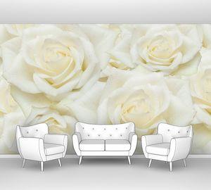 Фон из белых роз