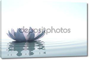 Лото Дзэн цветок в воде