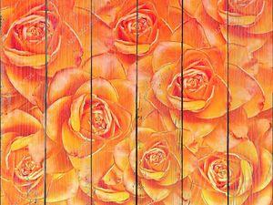 Оранжевый розовый фон