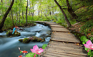 Быстрая речка