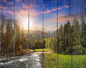 Горная река в сосновом лесу на закате