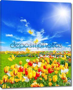 Луг с ассорти из цветов и бабочек