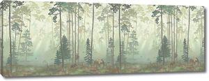 Хвойный туманный лес