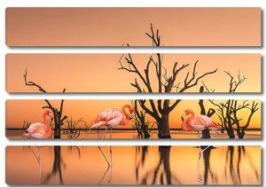 Фламинго у подтопленных деревьев