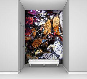 Бабочки фон