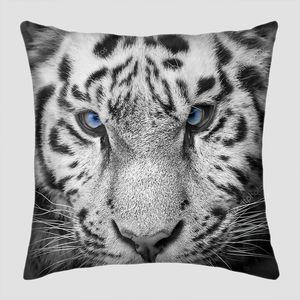 Дикий тигр с голубыми глазами
