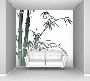 Ветки  бамбука  на белом фоне