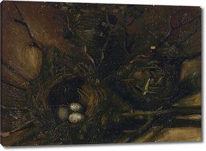 Ван Гог. Птичьи гнезда