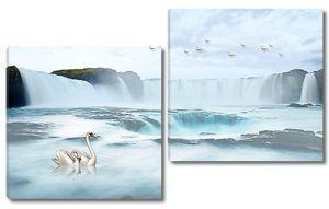 Лебедь в водах водопада