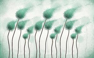 Бутоны-шары на ветру