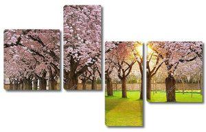 Увлекательный пейзаж Весна