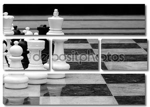 LifeSize шахматы