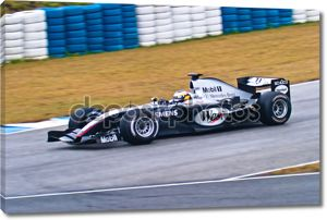 Команда mclaren mercedes f1, Педро де ла Роса, 2004