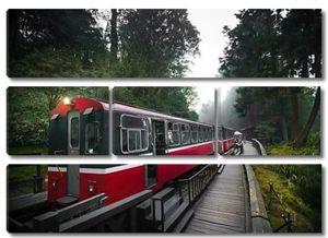 Алишан лесной поезд железнодорожной