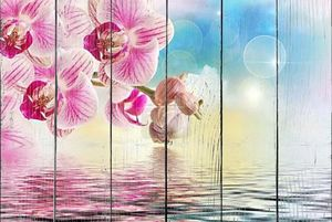 Орхидея цветок крупным планом
