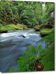 уровень воды в свежих зеленых деревьев в горной реке. свежий весенний воздух вечером после дождливый день.