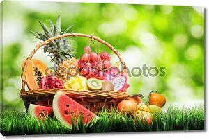 корзина тропических фруктов на зеленой траве