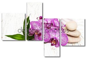 Орхидеи и Стоун массаж