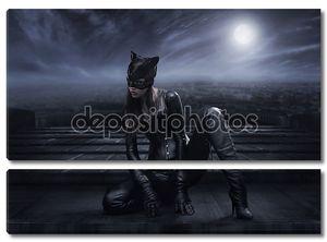 Женщина-Кошка сидит на крыше