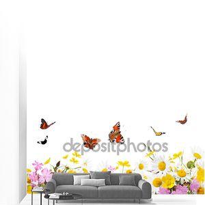 Полевые цветы, ромашки и бабочки