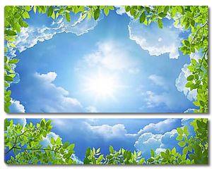 Солнце в рамке из листвы
