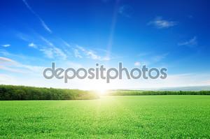 Восход солнца над зеленым полем