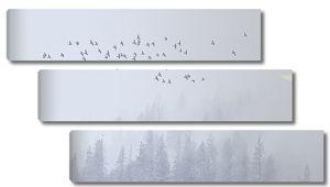 Месяц над лесом в тумане