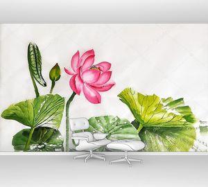 Лотос цветок акварельная живопись