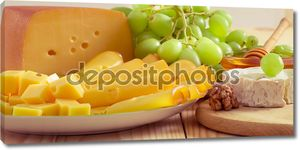 Still life with cheese, walnuts, honey and grapes