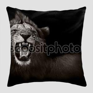Лев рычит