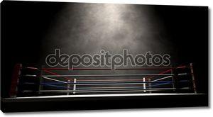 Бокс кольцо spotlit темный