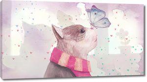 Кот с бабочкой