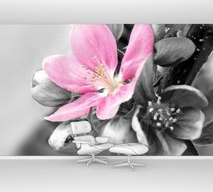 Красивый розовый распустившийся цветок
