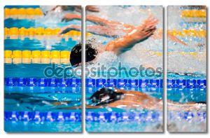 бабочка, плавающая гонка