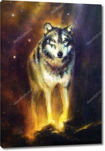 Волк на фоне космического неба