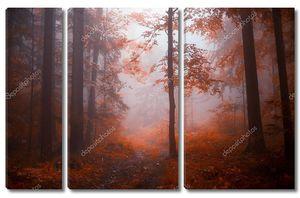 Размытый туманный лесной пейзаж