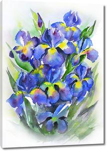 акварельный натюрморт с красивыми синими цветами ириса