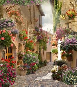 Узкая улочка в цветах