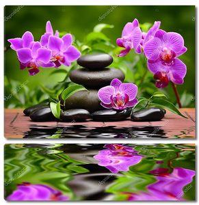 Базальтовые камни и орхидея