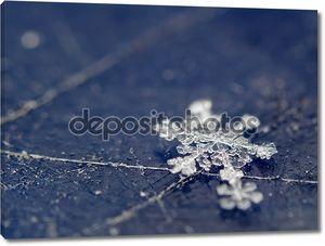 снежинка на поверхности scratсhed