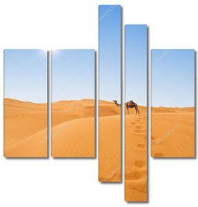 Пустыни и верблюд
