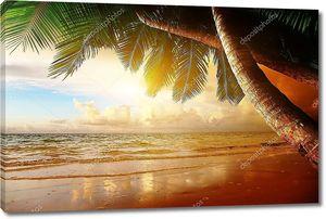 Восход солнца на Карибском пляже