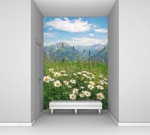 Горный пейзаж с ромашками