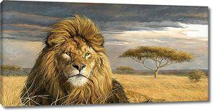 Старый лев