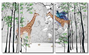 Жирафы у стены