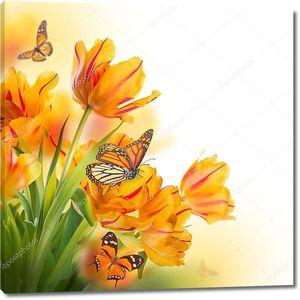 Желтые тюльпаны и бабочка