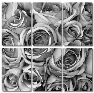 Фон с розами в черном и белом