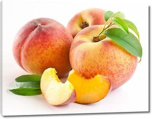 Спелые персики с веточкой